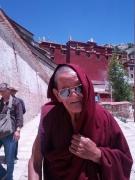 20130801-goedaardige-lama