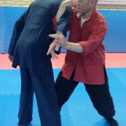 taiji-applicatie-jingwu-3